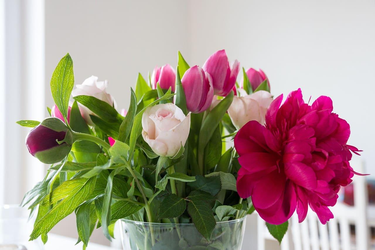 Fleurs Rétablissement