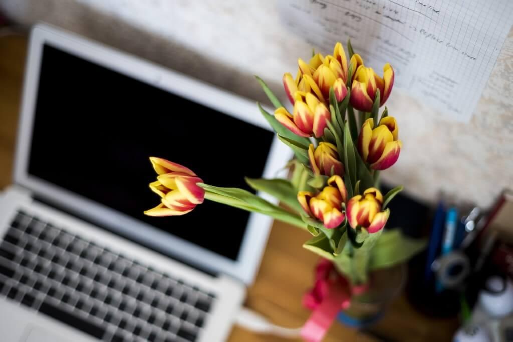 Fleurs bureau décoration florale pour professionnels