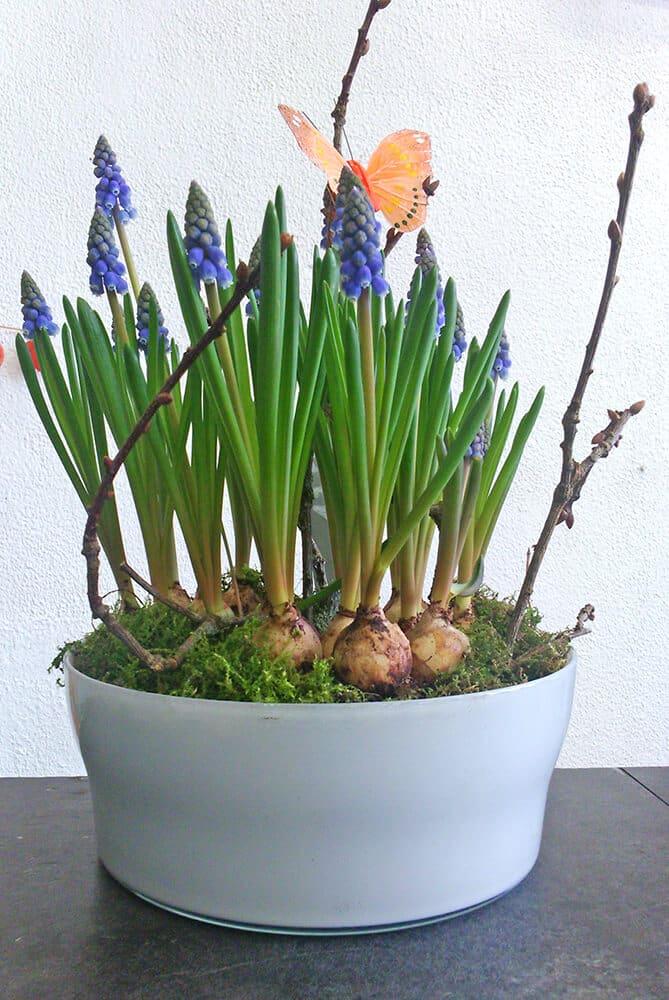 fleurs pour la f te des grands m res avec atelier floral. Black Bedroom Furniture Sets. Home Design Ideas