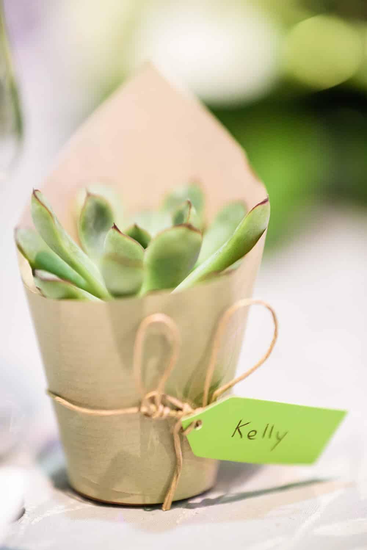 mariage des succulentes comme marque places et cadeaux. Black Bedroom Furniture Sets. Home Design Ideas