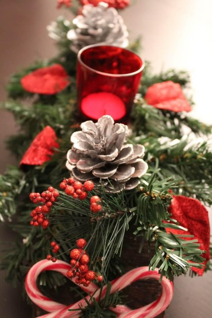 Fleurs pour Noël et Nouvel An