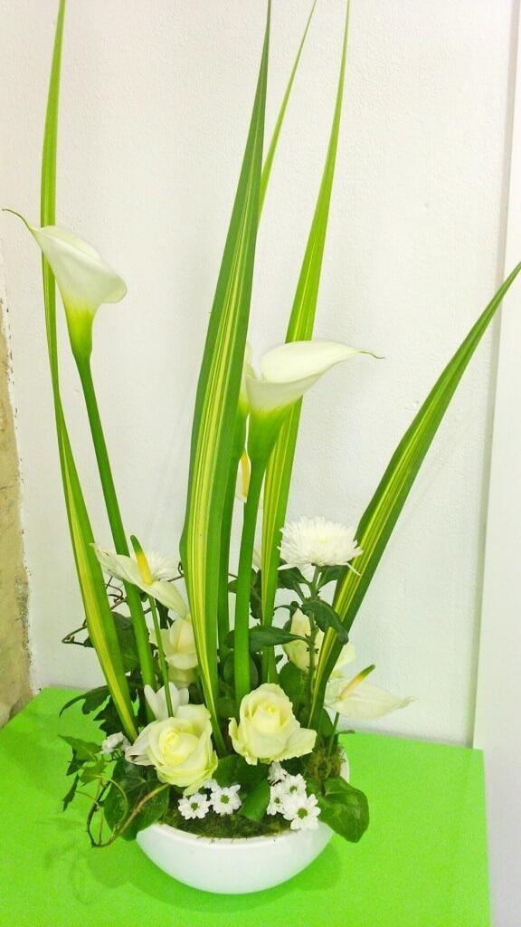 Shamrock santini anthurium feuilles de pandanus cyclamen et liane de lierre dans une céramique blanche
