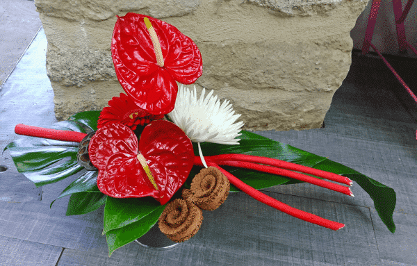 anthurium saint-valentin