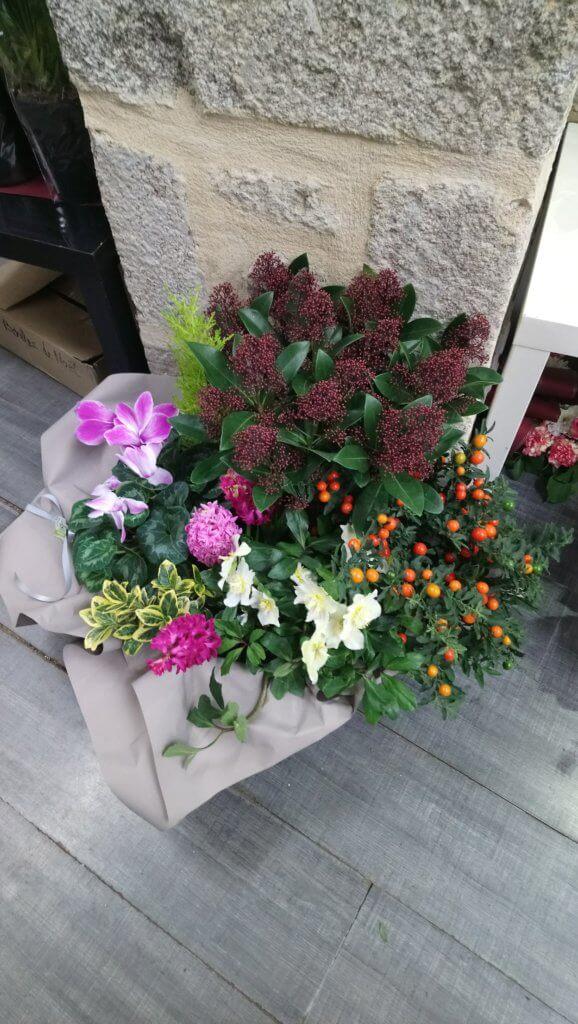 Coupe de plantes de deuil aux tons roses
